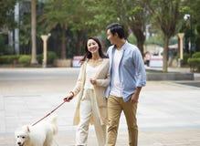 Asian couple laughing while walking dog outdoor in garden. Chinese couple laughing while walking their dog outdoor in garden royalty free stock images