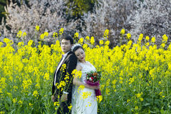Chinese couple wedding portraint in cole flower field Stock Images
