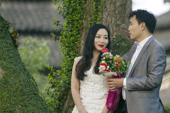 Chinese couple wedding portraint in front of Old trees and old building Royalty Free Stock Photos