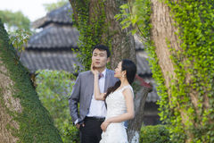 Chinese couple wedding portraint in front of Old trees and old building Stock Photos