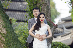 Chinese couple wedding portraint in front of Old trees and old building Stock Images