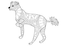 Chinese crested dog coloring vector for adults Stock Photo