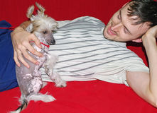 Chinese Crested Dog With Owner Royalty Free Stock Photo
