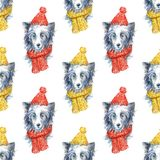 Chinese crested in winter hat and scarf portrait. Seamless pattern.Greeting card of a dog.Domestic pet.Watercolor hand drawn illustration.White background Royalty Free Stock Image