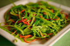 Warm Chinese salad with cabbage and hot pepper, served on a white plate. stock images