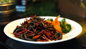 Chinese cuisine - Red Pepper Eel. A very popular Chinese food - Red Pepper eel Royalty Free Stock Photography