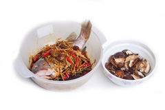 Chinese cuisine of steamed grouper with mashroom Stock Photos