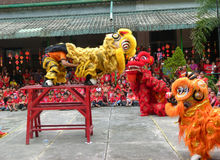 Chinese cultural performances Stock Images