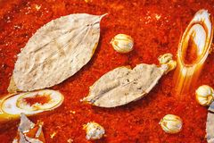 Chinese de soepvoorraad van de stijlvissoep met laurierblad, cardamon en gemengde geneeskundekruiden, Close-up royalty-vrije stock afbeeldingen