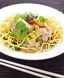 Chinese Deep Fried Noodle Royalty Free Stock Images