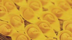Chinese delicatesse -- wonton stock video