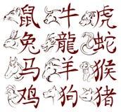 Chinese dierenriemtekens met hiërogliefen stock illustratie