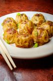 Chinese Dim Sum Dumplings. Delicious Chinese Dim Sum dumplings topped with scallions royalty free stock images