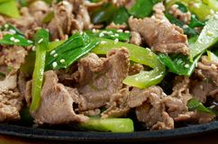 Chinese dish - beef with vegetables close-up Stock Photos