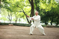 Chinese do taichi outside Royalty Free Stock Photos