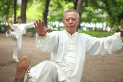 Free Chinese Do Taichi Outside Stock Photos - 19831973