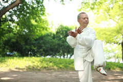 Chinese do taichi outside Royalty Free Stock Photography