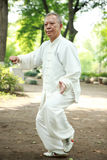 Chinese do taichi outside Stock Photography