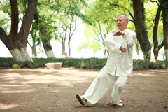 Free Chinese Do Taichi Outside Stock Images - 19833974