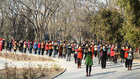 Chinese doing morning exercise in park. Many Chinese like doing morning exercise in park photoed in xigu park Tianjin China on March 9th 2014 Royalty Free Stock Photo