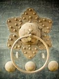 Chinese door knocker flower Stock Image