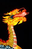 Chinese Dragon. Chinese Light  Festival in Emmen the Netherlands, Dragon