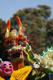 Chinese dragon. Dancing in celebration Royalty Free Stock Photo