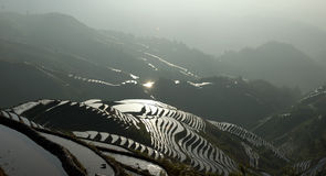 Chinese Dragon Backbone Terraces Stock Photography