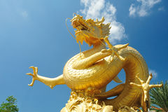 Chinese dragon on blue sky Royalty Free Stock Photo