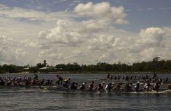 Chinese Dragon Boat Race Royalty Free Stock Images