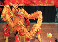 Chinese Dragon Dancing Royalty Free Stock Photos