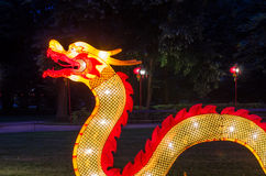 Chinese dragon at night in Łazienki Park Stock Photos