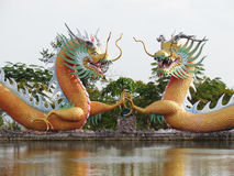 Chinese dragon statue around the pool, Arts cover a combination of style China and Thailand a unique Stock Images
