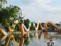 Chinese dragon statue around the pool, Arts cover a combination of style China and Thailand a unique. Royalty Free Stock Photography