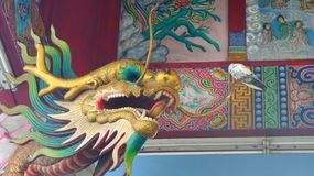 Chinese Dragon statue  and a small pigeon Royalty Free Stock Photo