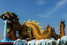 The Chinese dragon Stock Photos