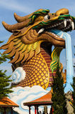 The Chinese dragon Royalty Free Stock Photos