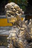 Chinese dragon temple guardian. Gold statue Stock Photos