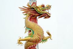 Chinese dragon Stock Images