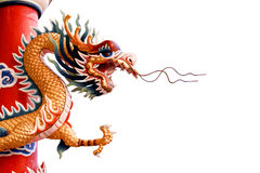Chinese dragon on white background Stock Photography