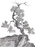Tree on mountain Chinese drawing Stock Photos