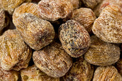 Chinese Dried Dates Stock Image
