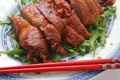 Chinese duck Stock Image
