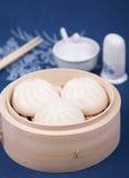 Chinese dumpling Royalty Free Stock Image