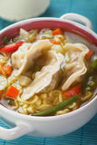 Chinese dumpling and noodle soup. With vegetables Royalty Free Stock Photo