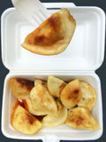 Chinese dumpling takeaway Royalty Free Stock Photography