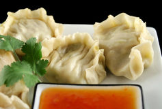 Chinese Dumplings 4 Royalty Free Stock Images
