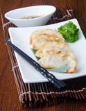 Chinese dumplings on the background Royalty Free Stock Photos