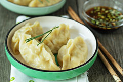 Chinese dumplings with ground chicken Royalty Free Stock Images