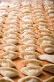 Chinese dumplings. These Chinese dumplings jiaozi are traditionally eaten during Chinese New Year Stock Photos
